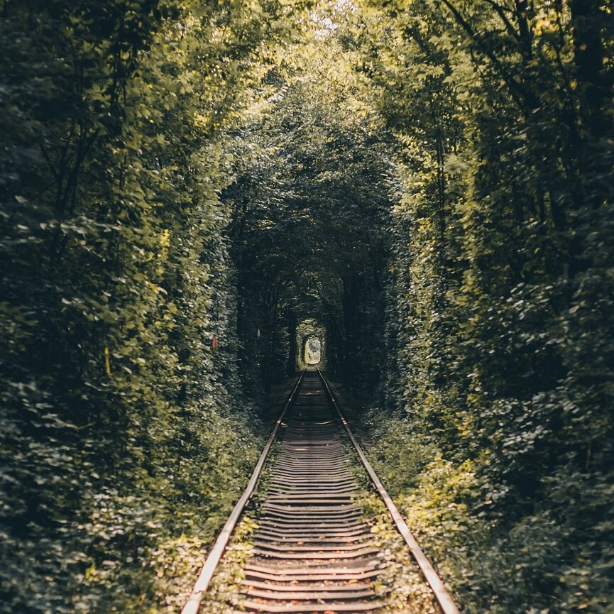 好奇心をくすぐる森に囲まれた電車のとんねる