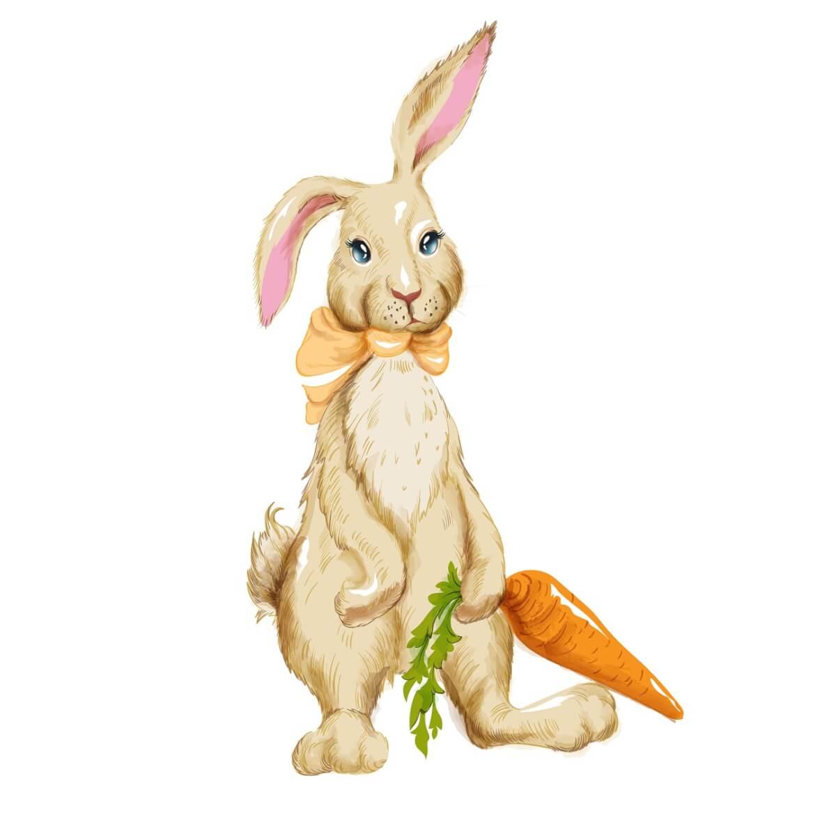 ウサギが耳をたてている様子