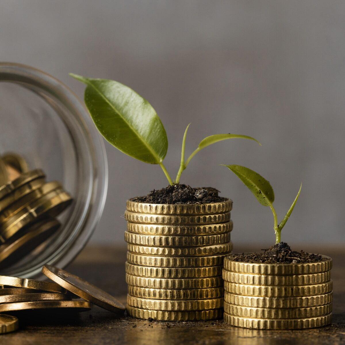資産が育っていく様子。積み上げたお金の上に芽が出ている様子。